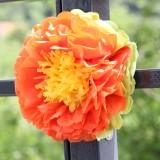 Kvet, ktorý nezvädne